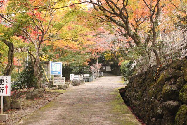 牛滝山の大威徳寺と紅葉