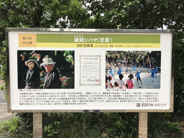チヂン 奄美大島の島太鼓