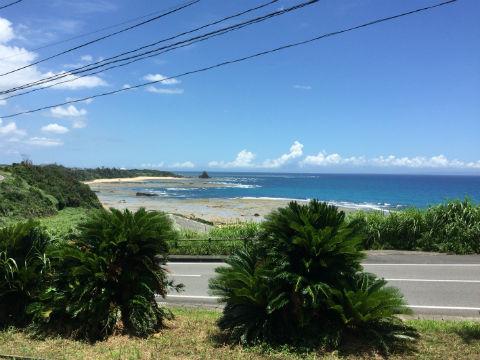 喜界島 風景